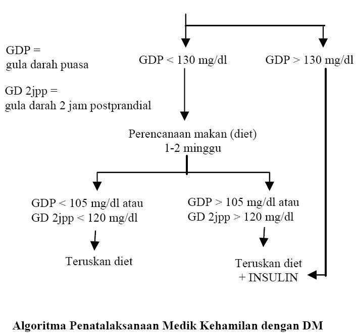 makalah diabetes pada kehamilan
