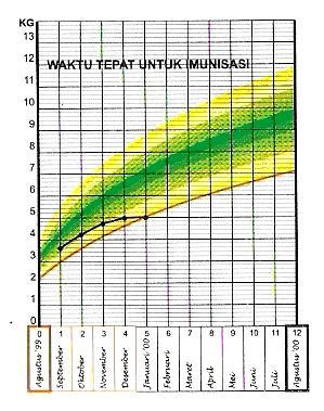 Tabel Berat Badan Bayi Perempuan Normal Berdasarkan WHO